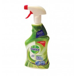 Dettol Mould and Mildew Cleaner