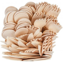 birch_cutlery_biodegradable_disposable