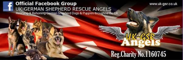 UK-GSR Banner