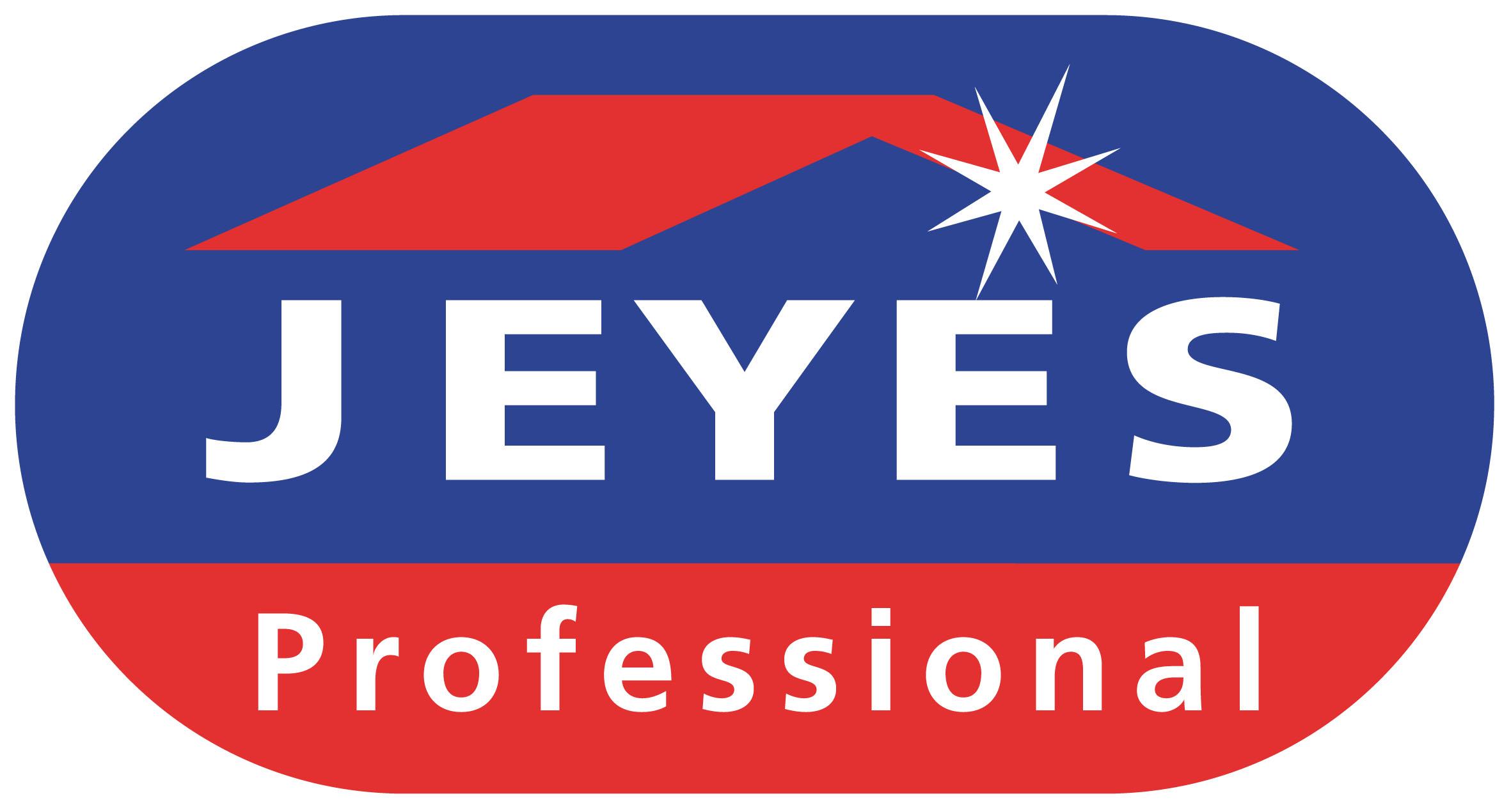 Jeyes Professional Logo